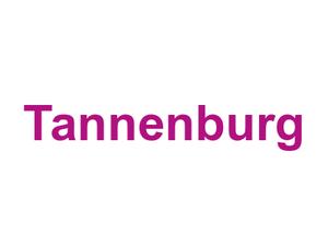 Tannenburg Wiesbaden